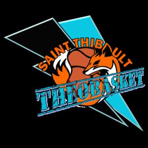 logo_TheoBasket