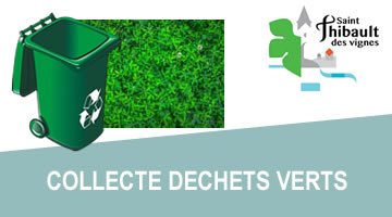 stv_dechets-verts