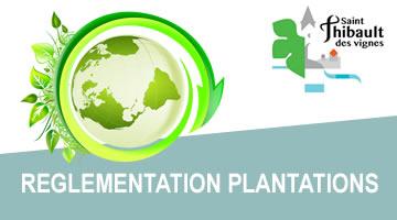 stv_reglementation-plantations
